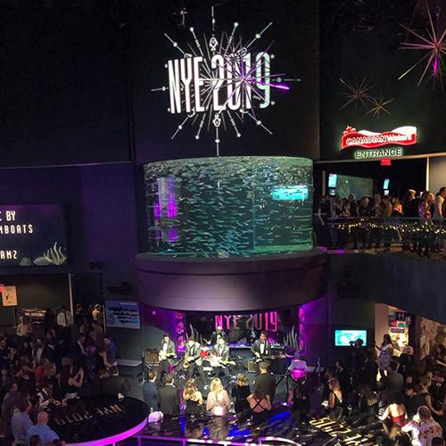 Event design and live music at Ripley's Aquarium NYE 2019