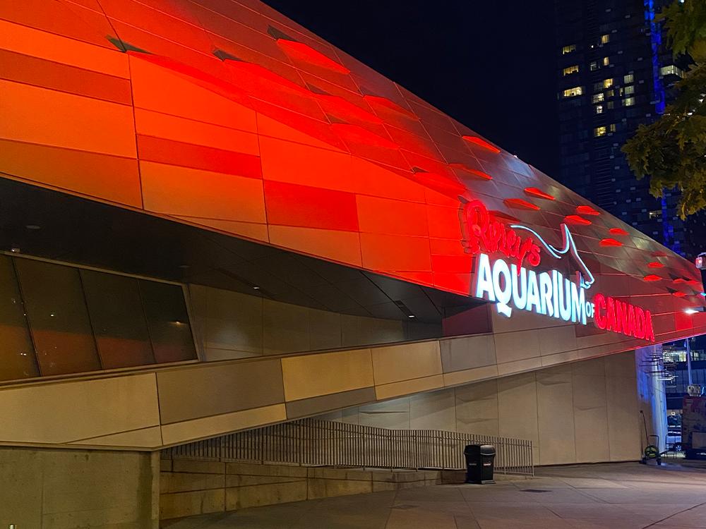 Ripley's Aquarium - exterior with red event lighting